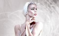 swan_lake_keyart_big web